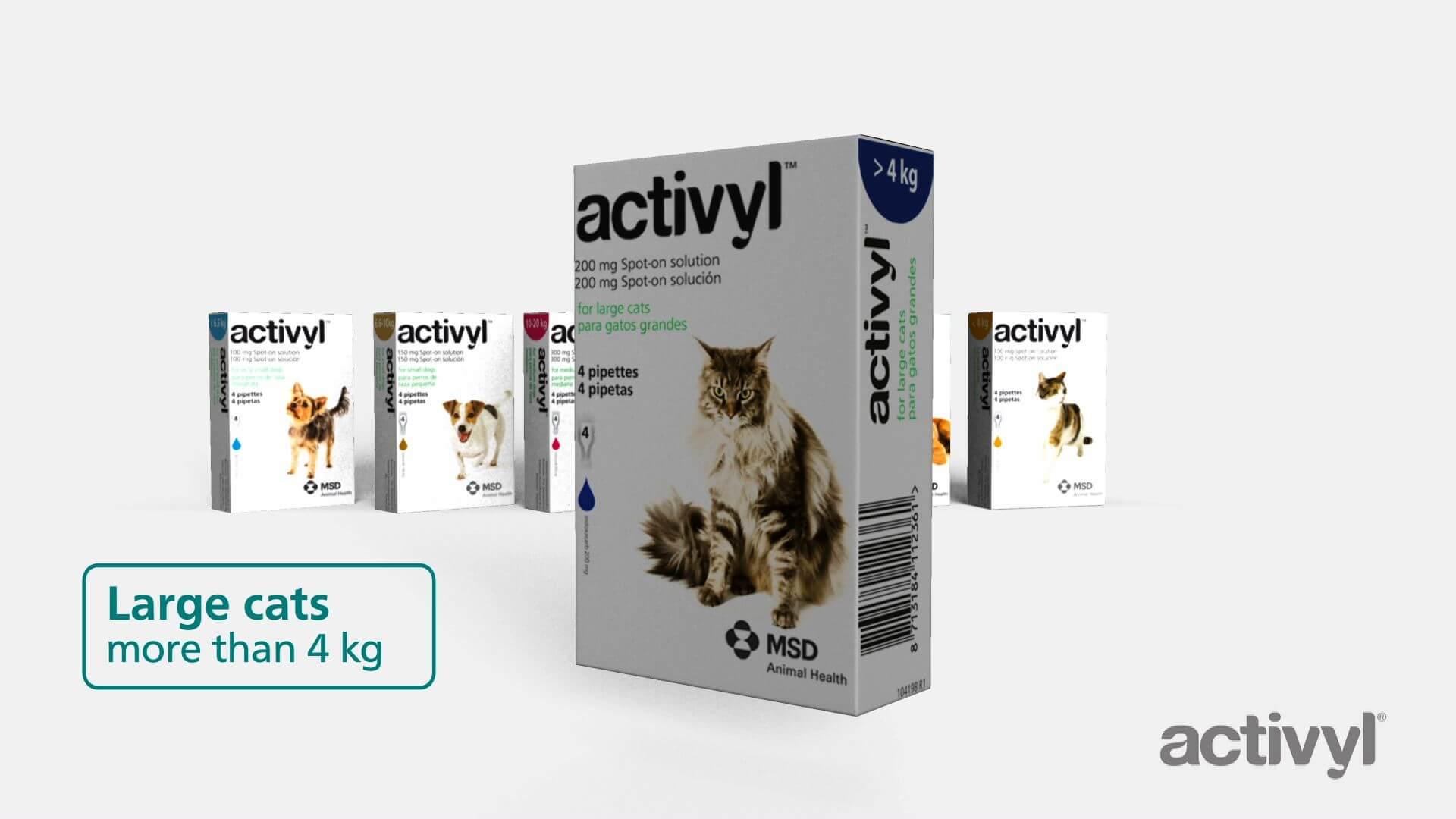 ACTIVYL_ENG_DVD-v4-sin-6